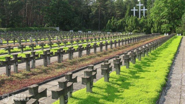 https://naszapolska.pl/wp-content/uploads/2020/03/2707px-Palmiry_Cemetery-640x360.jpg