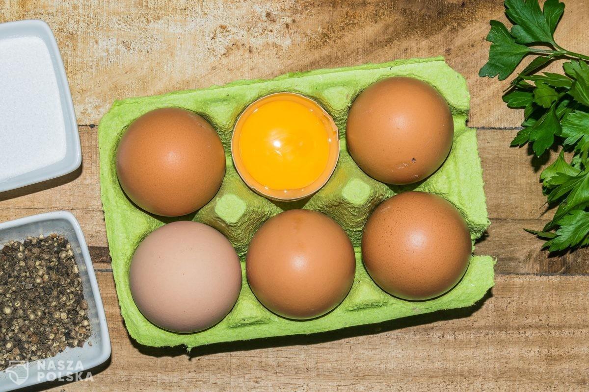 Ptasia grypa u największego producenta kurzych jaj na Pomorzu