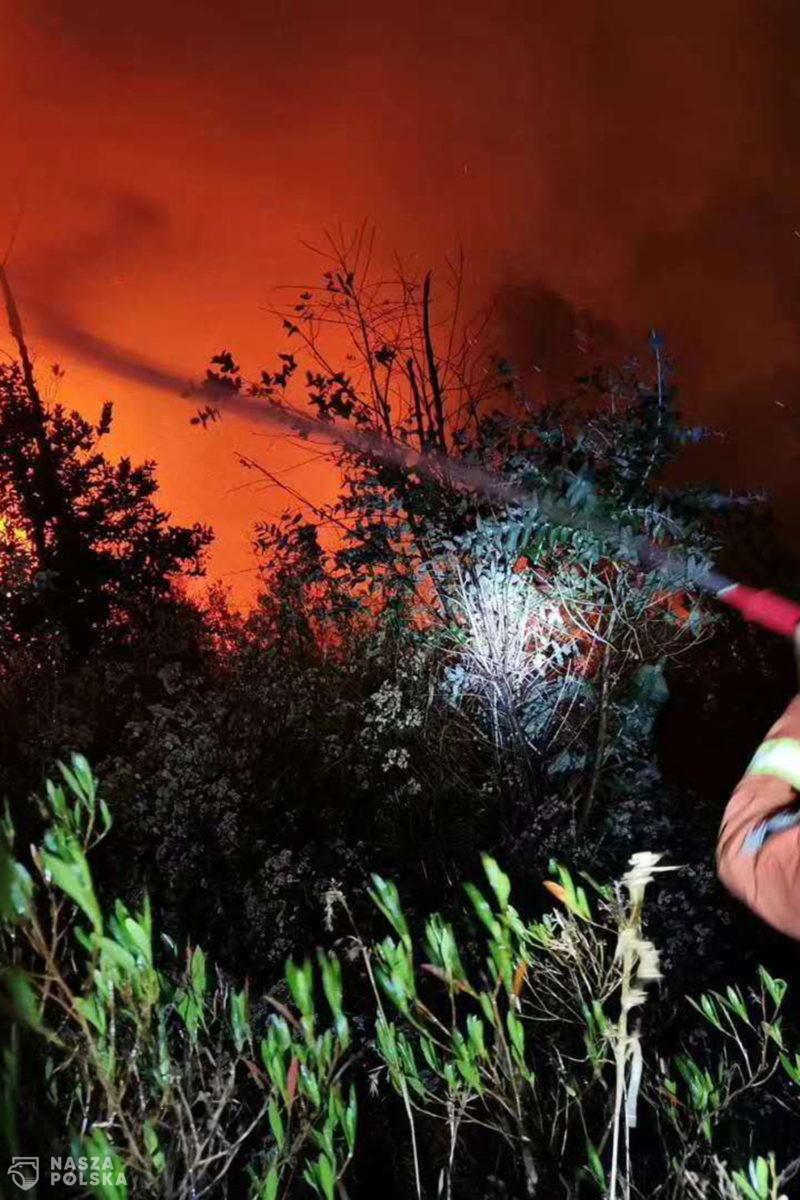 Pożar lasów – Chiny