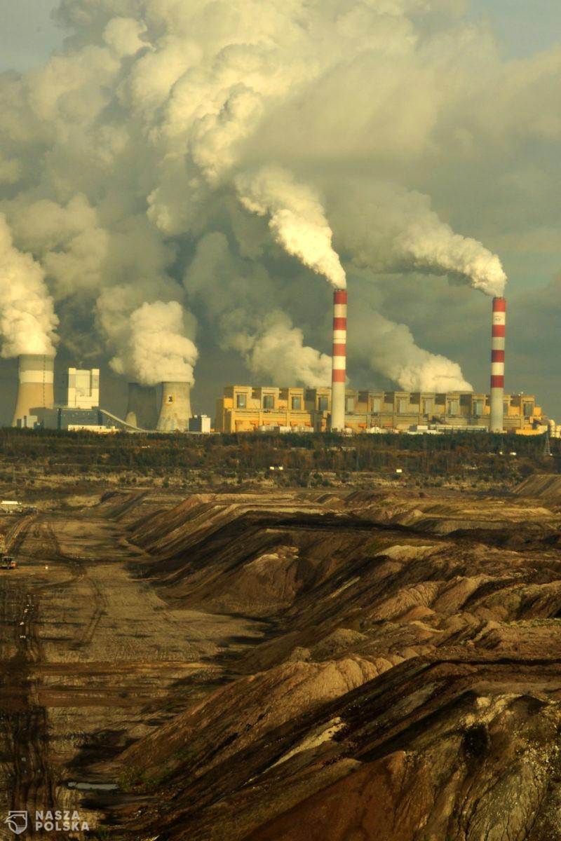 Niemcy twierdzą, że Polska gospodarka świetnie sobie radzi w pandemii