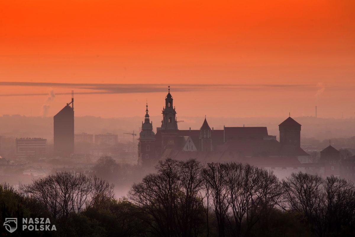 Mimo pandemii w Krakowie przybyło prawie 25 tysięcy płacących podatki