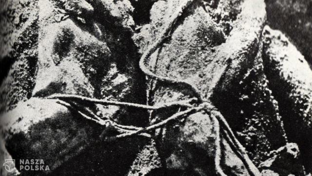 https://naszapolska.pl/wp-content/uploads/2020/04/Katyn_massacre-640x360.jpg