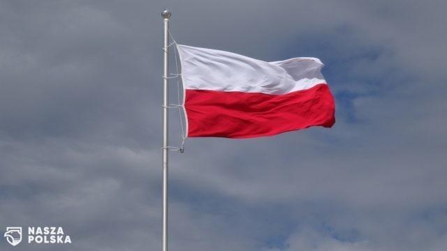 Badanie: blisko 63 proc. Polaków sprawdza przed zakupem, czy wybrany produkt jest krajowy