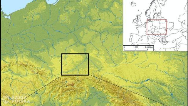 Dieta mieszkańców płd. Polski kilka tysięcy lat temu w dużej mierze roślinna