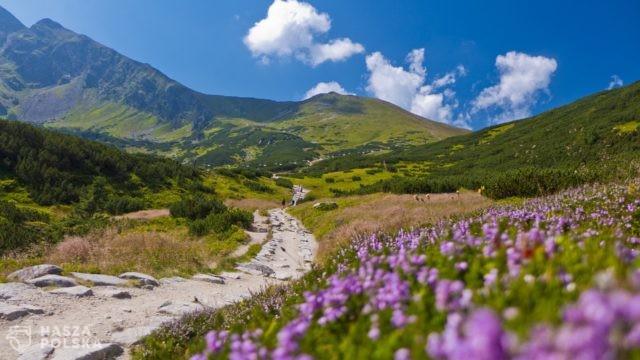 https://naszapolska.pl/wp-content/uploads/2020/07/mountains-885665_1920-640x360.jpg