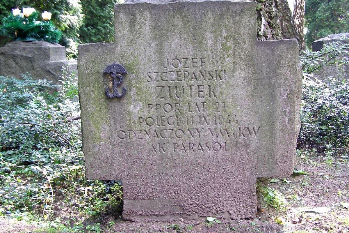 Coroczna zbiórka pieniędzy na renowację Powązek przeniesiona do Internetu