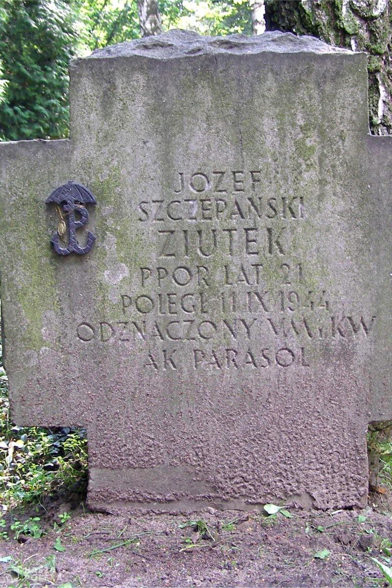 """Nieznane wiersze autora """"Pałacyku Michla"""" Józefa Szczepańskiego """"Ziutka"""""""