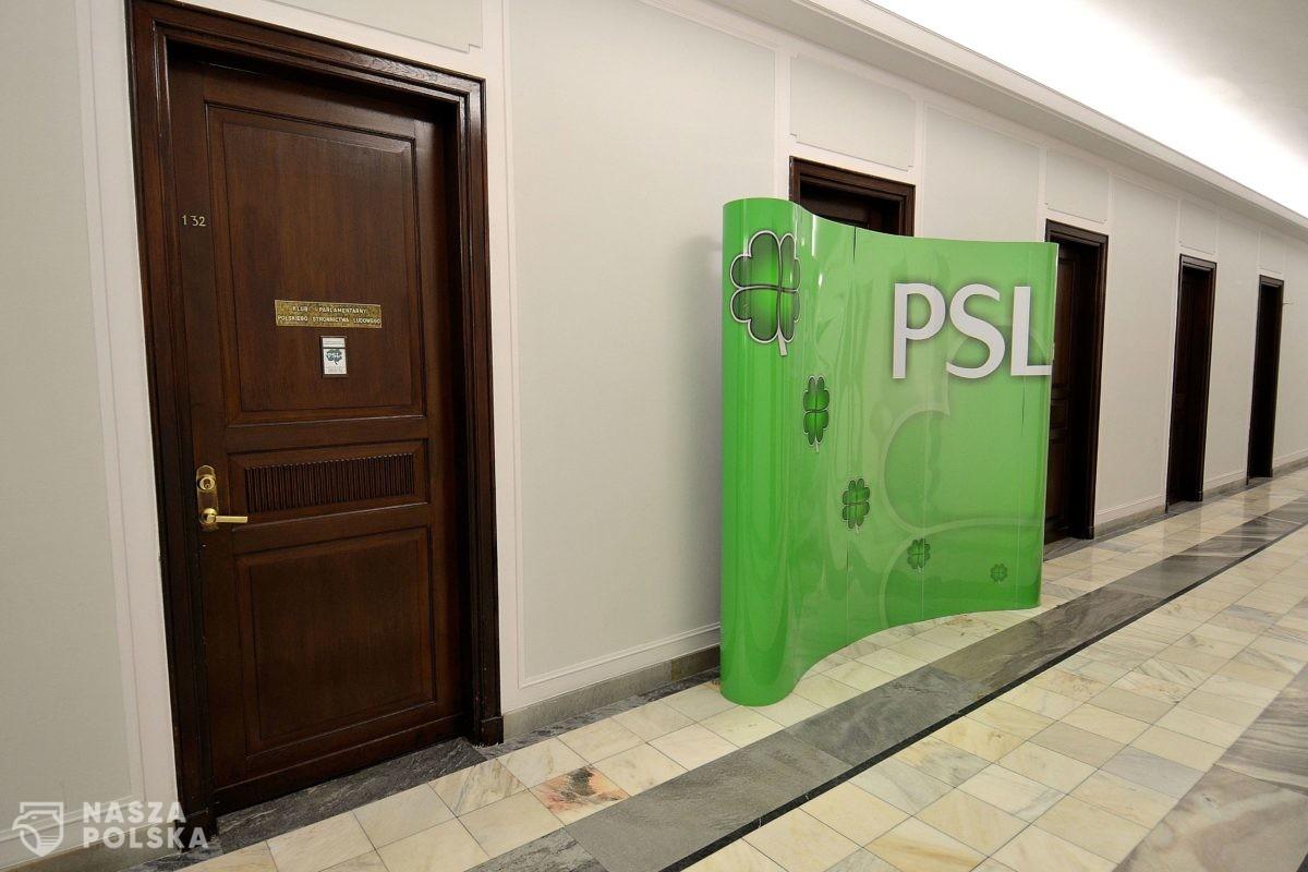 PSL-Kukiz15: to rząd osobliwości