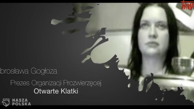 https://naszapolska.pl/wp-content/uploads/2020/09/Zrzut-ekranu-2020-09-21-o-08.53.42-640x360.png
