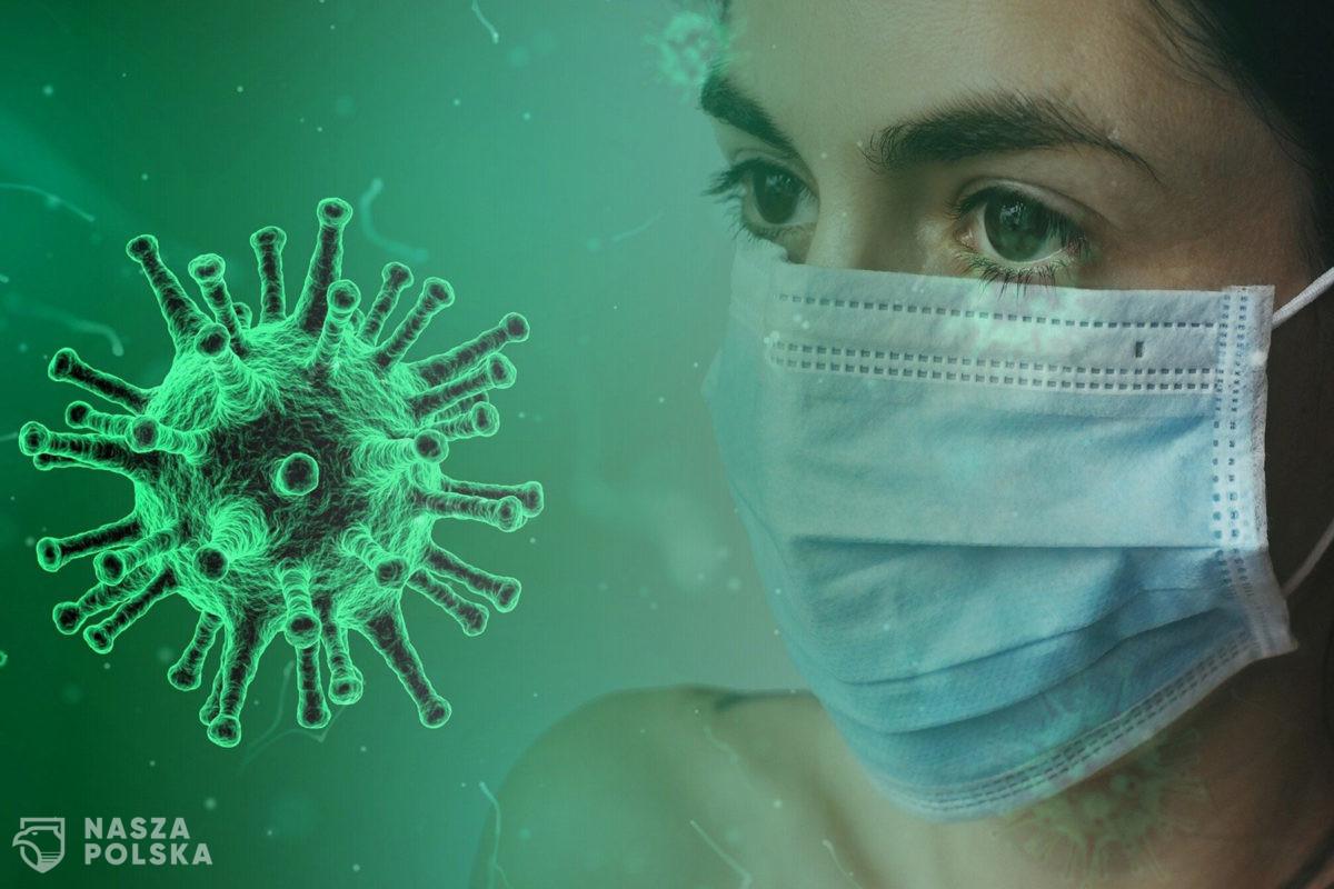 Ludzie wariują i wchodzą w narkotyki przez koronawirusa?