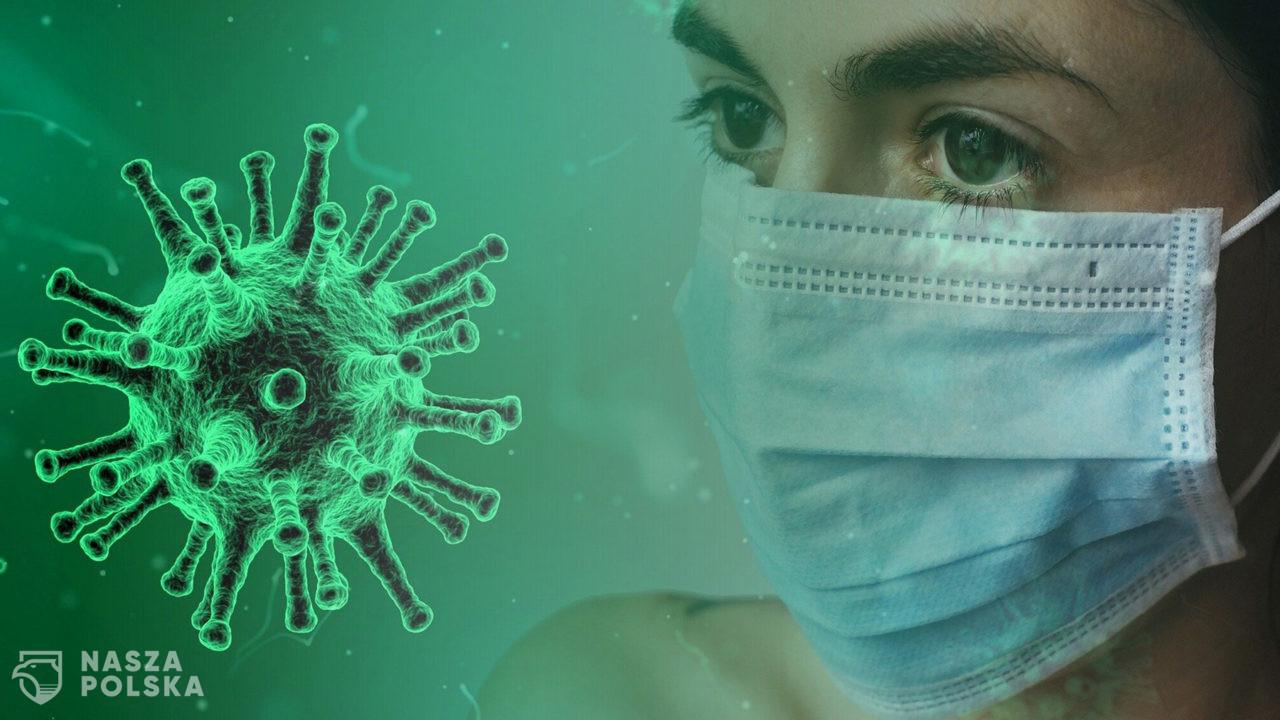Ekspert: poziom przeciwciał po przechorowaniu COVID-19 spada, ale to nie znaczy, że tracimy odporność