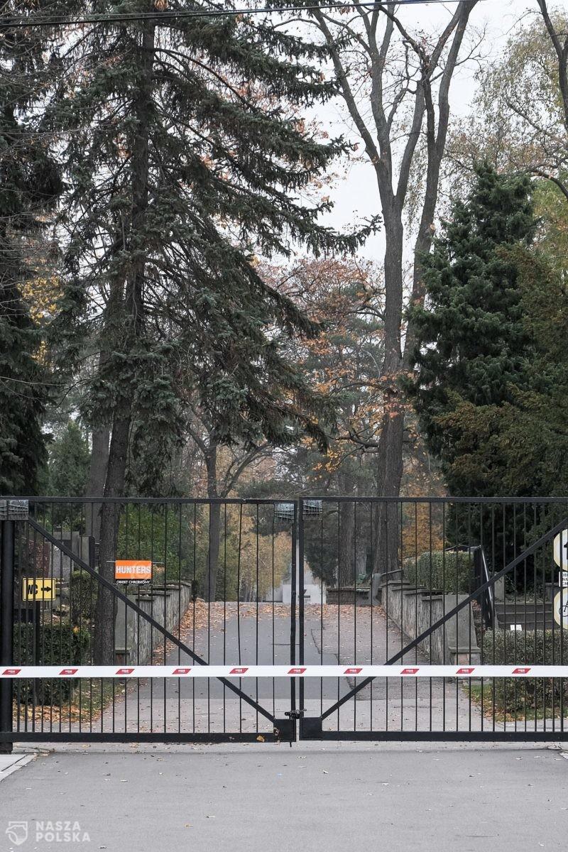 Rzecznik Episkopatu: Módlmy się w domach za naszych bliskich zmarłych