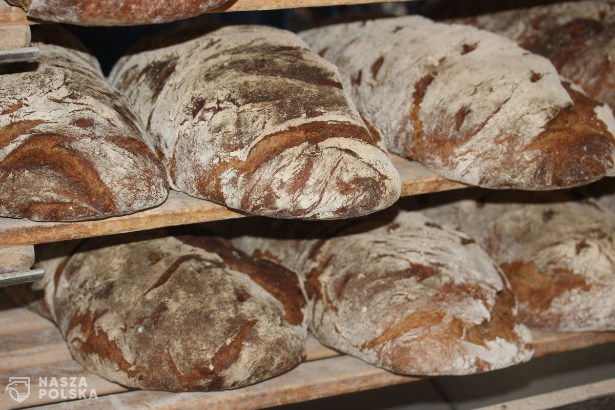 Jemy coraz mniej chleba