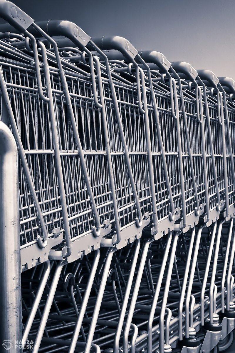"""Prof. Wysocki: Chodzenie do sklepów z małymi dziećmi to """"skrajna nieodpowiedzialność"""""""