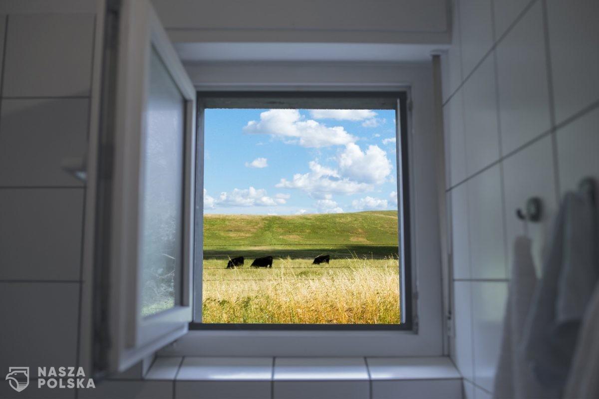 Badanie: wentylacja lepsza w zapobieganiu zakażeniom w pomieszczeniach niż maseczki