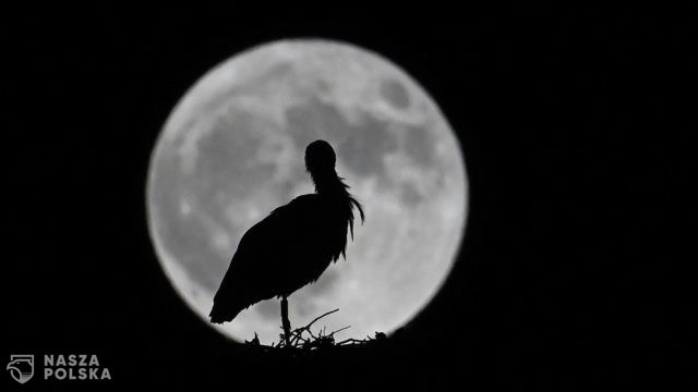 Księżyc – Hiszpania