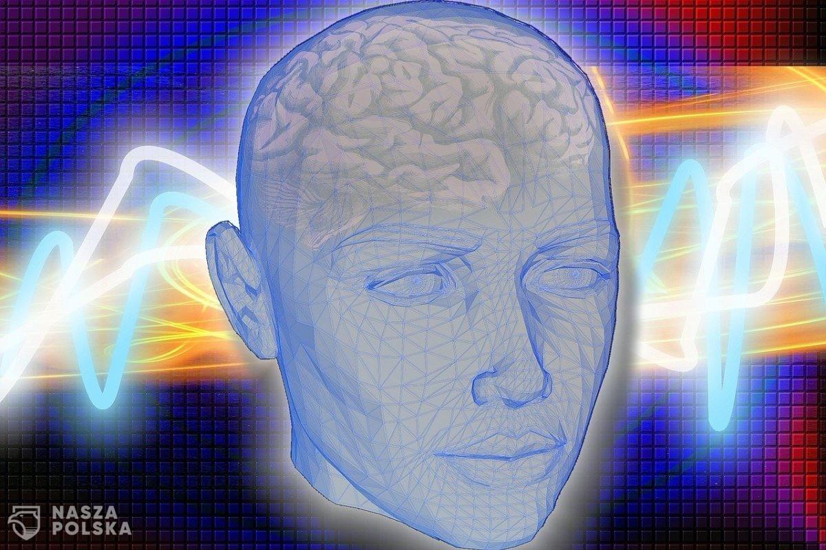 Mikrochipy w mózgu, czyli na drodze do Homo cyber