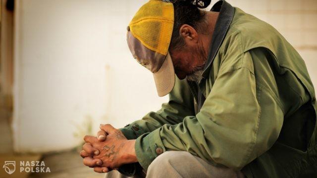 W dobie pandemii milionom Amerykanów zagraża głód