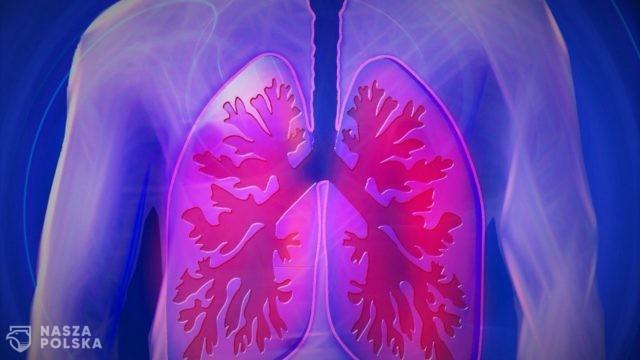 Badania z Turynu: USG płuc pozwala poprawnie zdiagnozować Covid-19