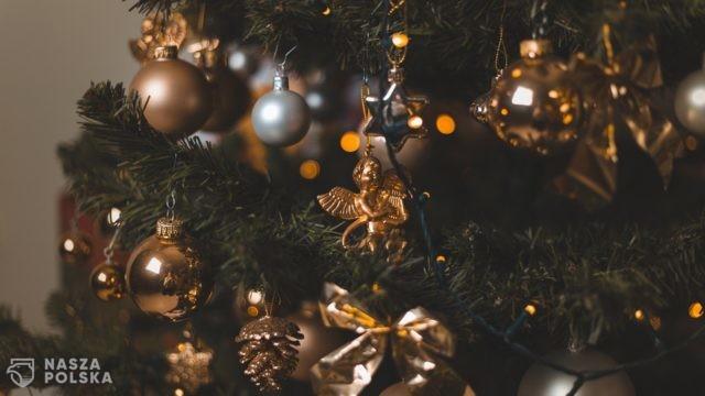 Etnolog o Bożym Narodzeniu: tradycje trwają, ale ich sens nam umyka