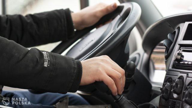 Prawie wszyscy belgijscy kierowcy łamią przepisy