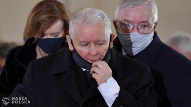 Kaczyński: stosunek do zwierząt to jest element kultury