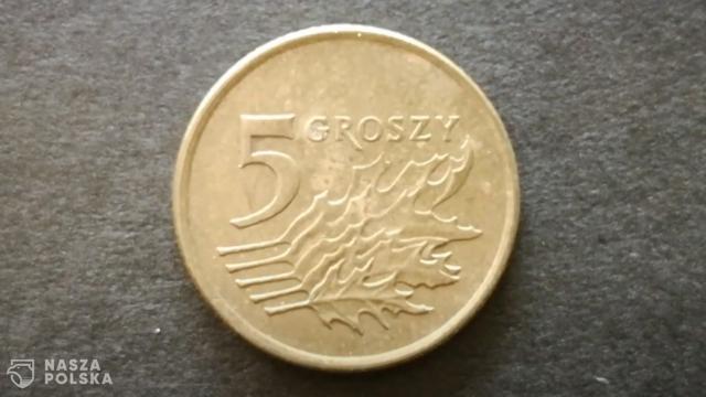 Banknoty i monety nie stanowią istotnego zagrożenia SARS-CoV-2