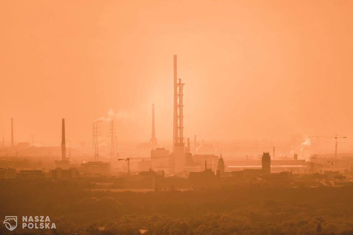 Czym polski smog różni się od smogu londyńskiego czy kalifornijskiego?