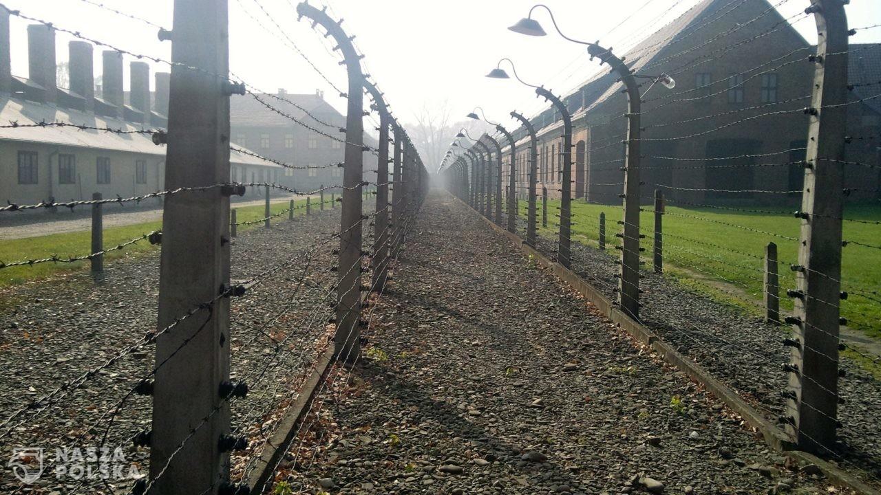 Fałszowanie historii jest podstępniejsze niż negowanie Holokaustu