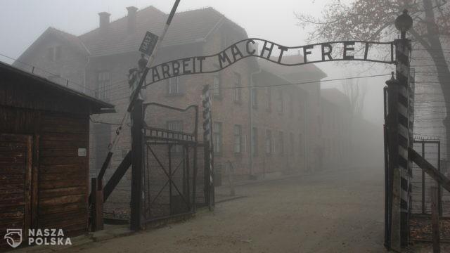 Niemiecki historyk: daje do myślenia, że antysemityzm może istnieć w Niemczech po Holokauście