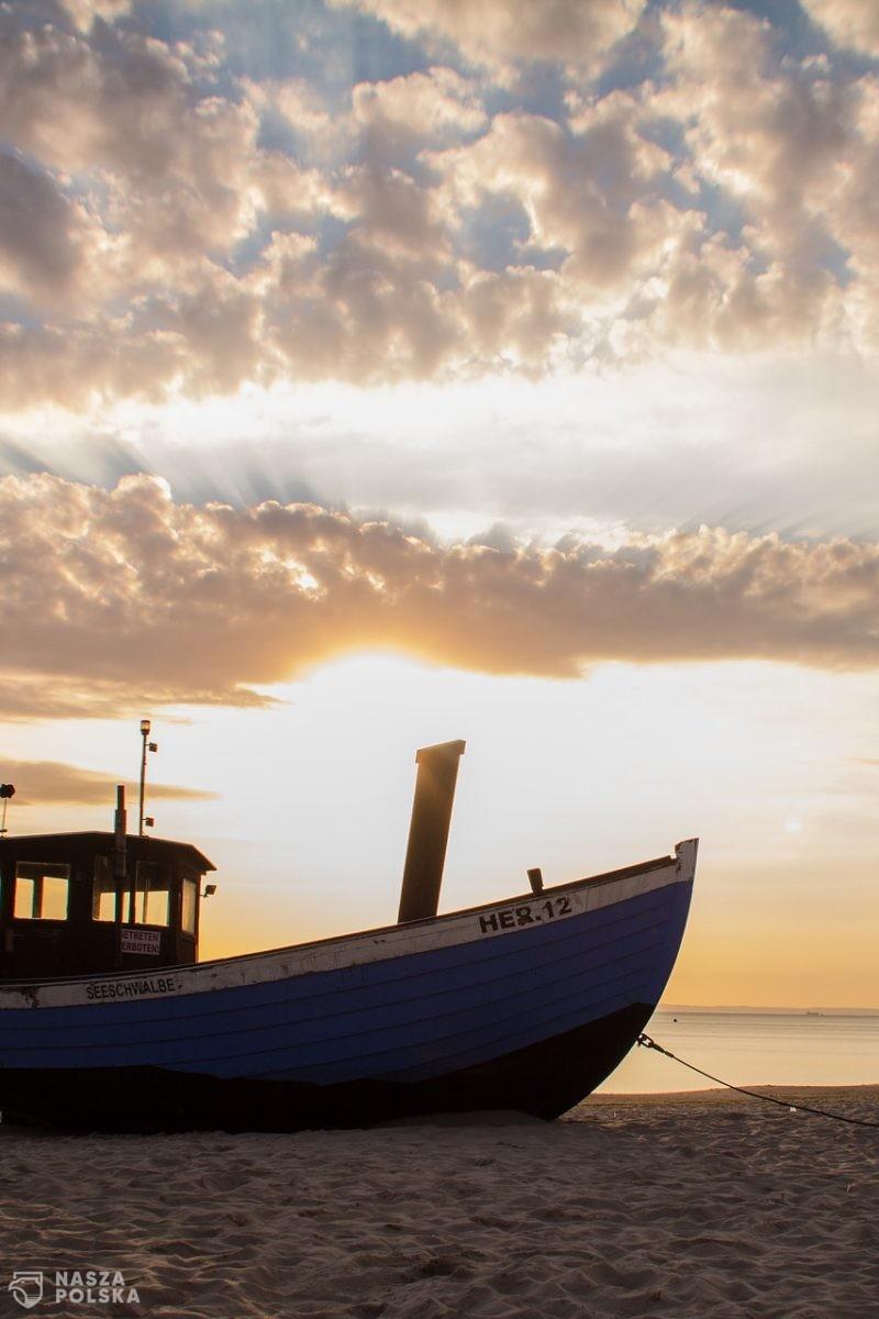 Polacy nie doceniają ryb z Bałtyku