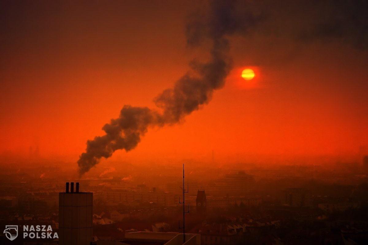 Strach oddychać. Koszmarna jakość powietrza w polskich miastach