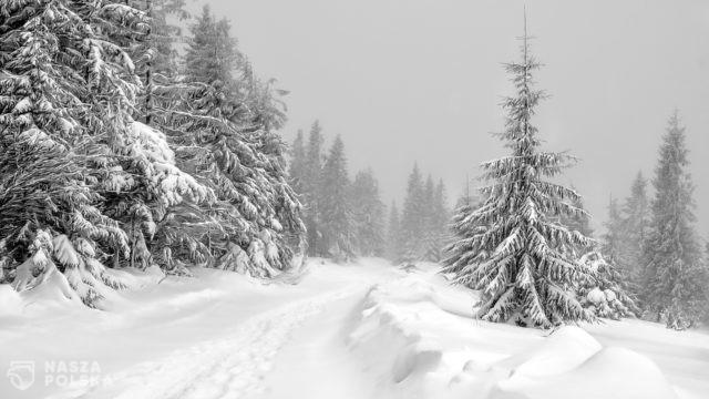 Niedziela ostatnim dniem przerwy świątecznej, od poniedziałku ferie zimowe