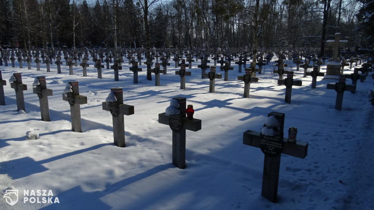 Cmentarz Wojskowy na Powązkach w zimowej aurze