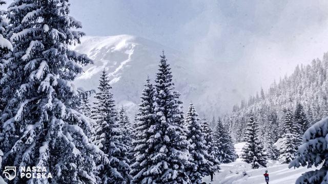 Tatry/ Nie żyje dwóch skialpinistów porwanych przez lawinę