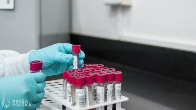 Eksperci mówią, jak sprawdzić, czy po szczepionce uzyskaliśmy odporność