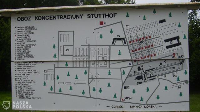 Niemcy/ Były strażnik obozu koncentracyjnego Stutthof uniknie procesu z powodu stanu zdrowia