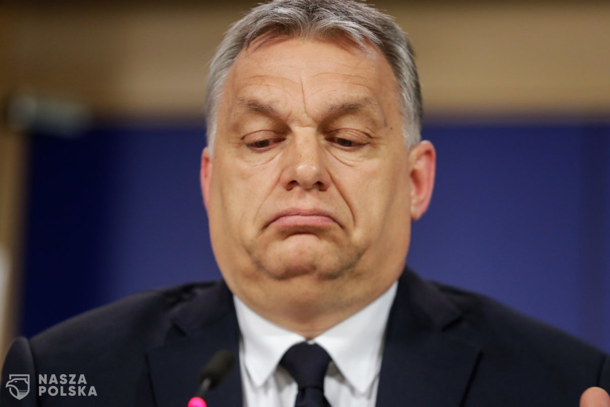 Fidesz opuszcza szeregi partii Tuska