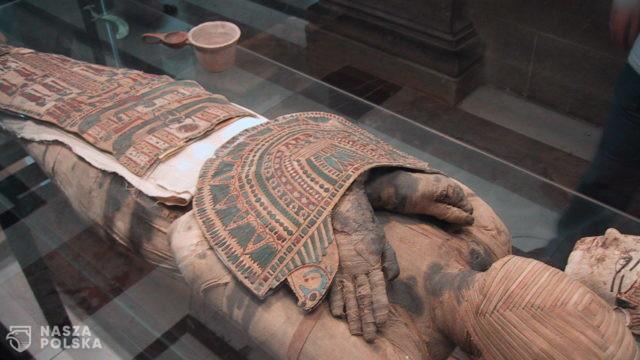 Pierwsza znana egipska mumia ciężarnej kobiety znajduje się w Warszawie