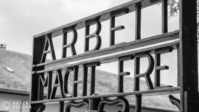 """Rocznica wyzwolenia Dachau. """"Zbrodnie, które się tu wydarzyły nie znikną"""""""