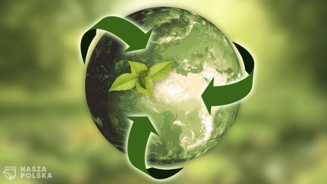 Ekolog: tylko bioróżnorodność uchroni nas przed kolejnymi pandemiami