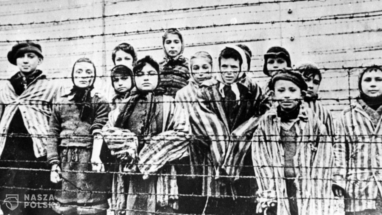 Losy dzieci pod okupacją niemiecką w latach 1939-1945