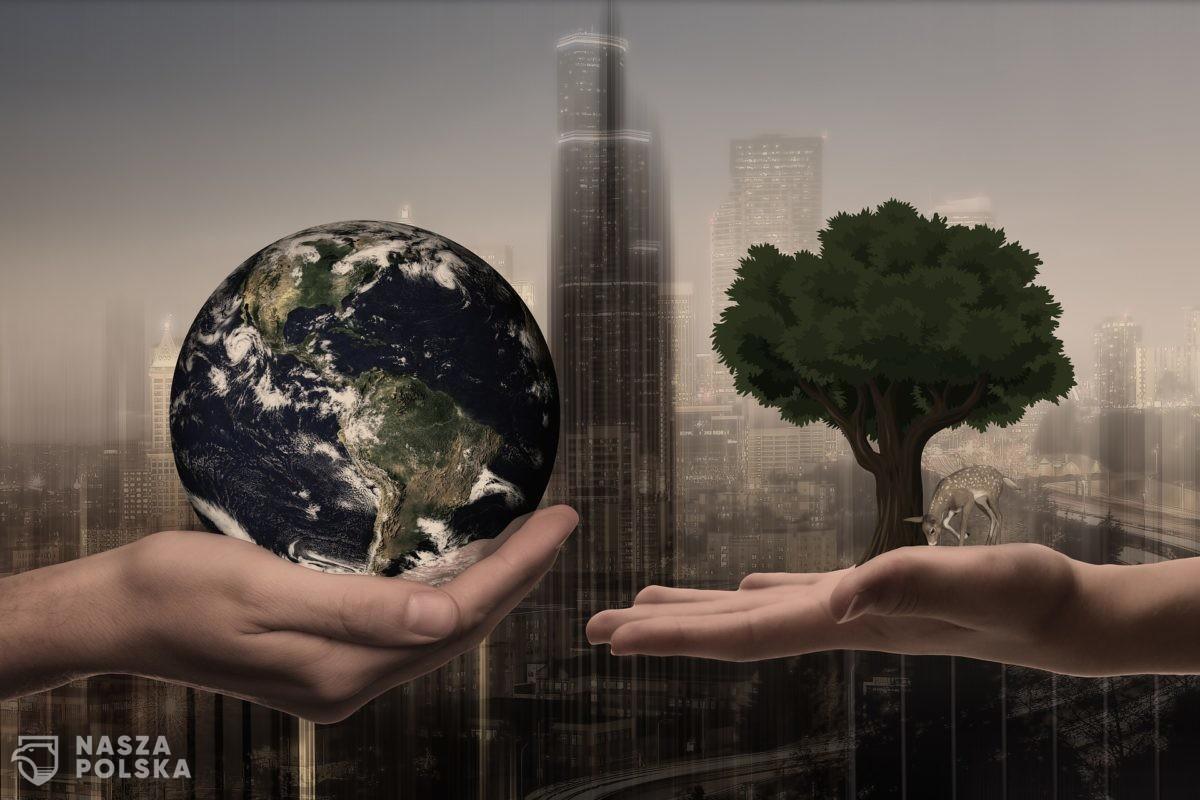 Młodzież – nadzieja czy zguba dla środowiska?