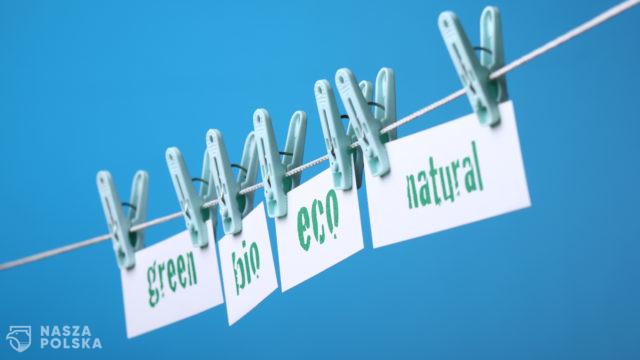 Greenwashing i jego czarna strona