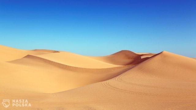 Na świecie może zabraknąć piasku. W wyniku nielegalnego wydobycia cierpi środowisko i giną ludzie