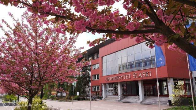 Uniwersytet Śląski/ Akademik tylko dla zaszczepionych
