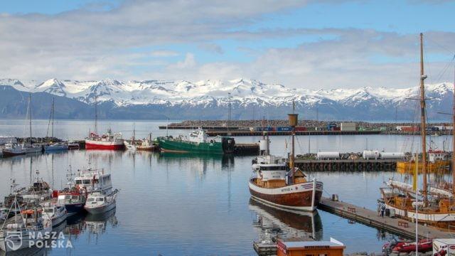 Sukces czterodniowego tygodnia pracy na Islandii