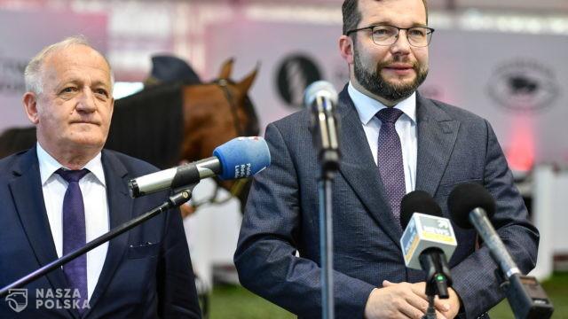 Puda: Hodowla polskich koni arabskich jest naszą dumą narodową