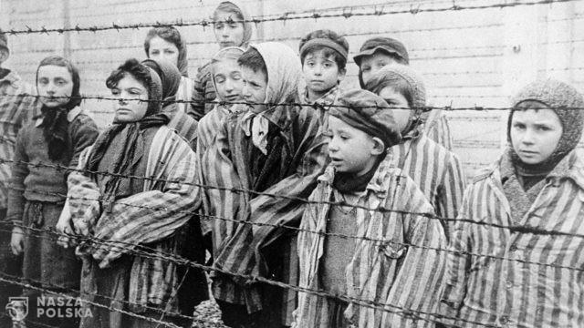 Muzeum Auschwitz udostępniło wirtualną lekcję o dzieciach deportowanych do obozu