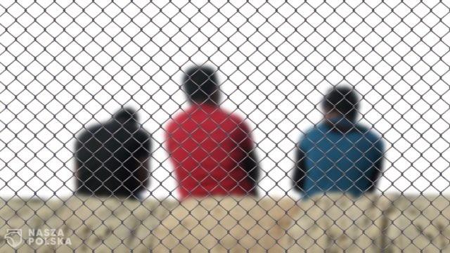 Węgry/ W tym roku schwytano ponad 54 tys. nielegalnych migrantów